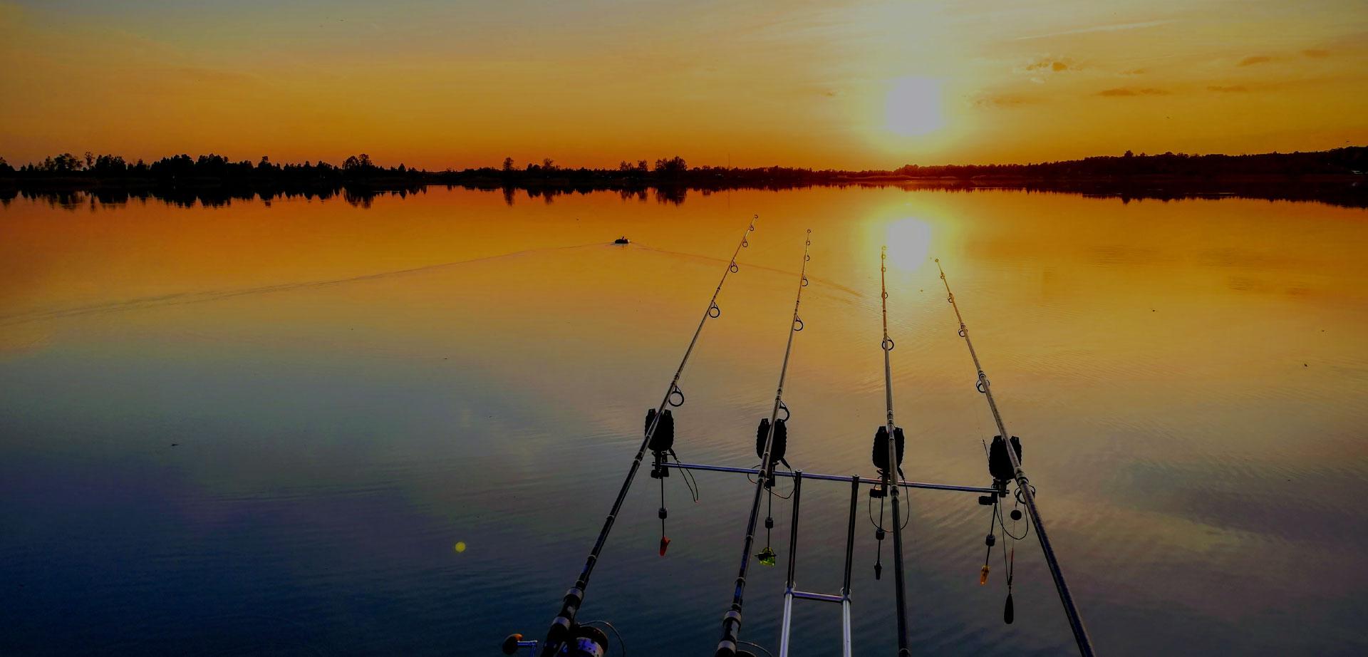 Риболовля та відпочинок на озері Кричевичі
